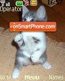 Karate Kitten es el tema de pantalla