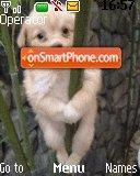 Puppy Climber es el tema de pantalla