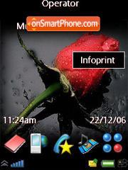 Wet Rose theme screenshot