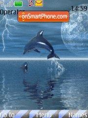 Dolphin In Lightning tema screenshot