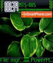 Green Leaf es el tema de pantalla