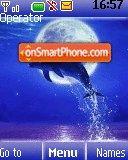 Dolphin es el tema de pantalla