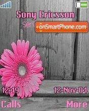 Pink Flower es el tema de pantalla