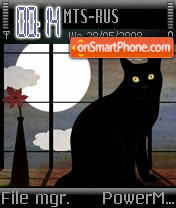Black Cat theme screenshot