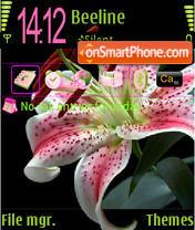 Black Pink Lily es el tema de pantalla