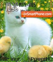 Cat n Chicks theme screenshot