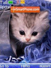 Nice kitten theme screenshot