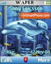 Dolphins es el tema de pantalla