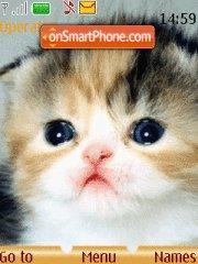 Kitten theme screenshot