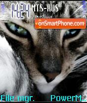 Nice Cat es el tema de pantalla