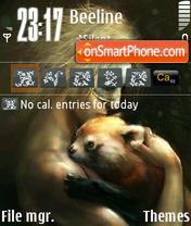 Care theme screenshot