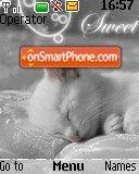 Sweet Cats 01 es el tema de pantalla
