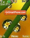 Flower Reflections theme screenshot