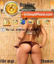 Pamela theme screenshot