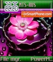 Pink And Green theme screenshot
