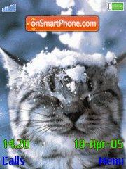 Cat In Snow es el tema de pantalla