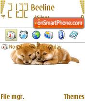 Shiba 2008 es el tema de pantalla
