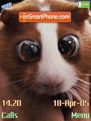 Hamster es el tema de pantalla