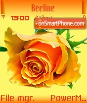 Yellow Rose 01 theme screenshot