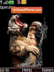 Tiger 14 theme screenshot