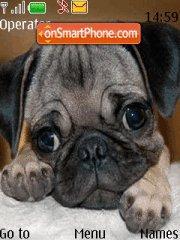 Puppy theme screenshot