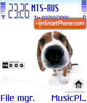 Beagle Dog theme screenshot