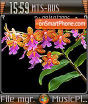 Windows Vista Orchid theme screenshot