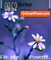 Floral View theme screenshot