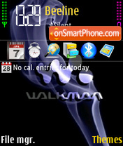 Walkman theme screenshot