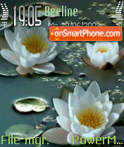 White Lotus theme screenshot