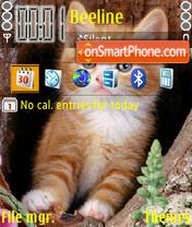 Cute Cat theme screenshot