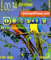 Parrot 02 es el tema de pantalla