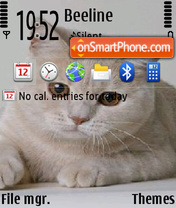 Cats 13 theme screenshot