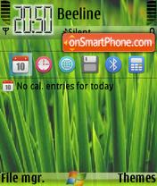 Green Windows 01 es el tema de pantalla