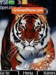 Bangal Tiger tema screenshot