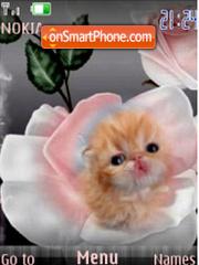 Rose $ Kitten Flash slide theme screenshot