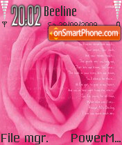 Rose 17 theme screenshot