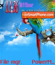 Colours Parrot es el tema de pantalla