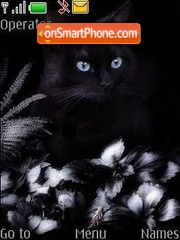 Black cat theme screenshot