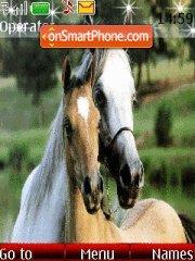 Horse es el tema de pantalla
