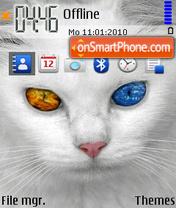 White Cat 02 es el tema de pantalla