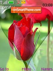 Heart Rose Valentines Day Swf Clock theme screenshot