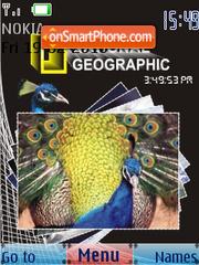 Peacock SWF Clock theme screenshot