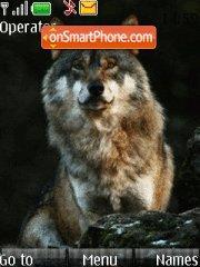 Wolf 04 theme screenshot