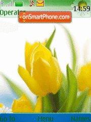 Spring 13 es el tema de pantalla