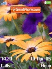 Flowers 16 es el tema de pantalla