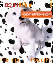 Cute Dog 04 es el tema de pantalla