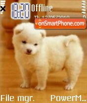 Cute Dog 05 es el tema de pantalla