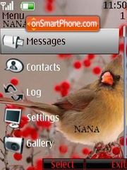Bird Red Clock theme screenshot