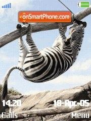 Zebra es el tema de pantalla